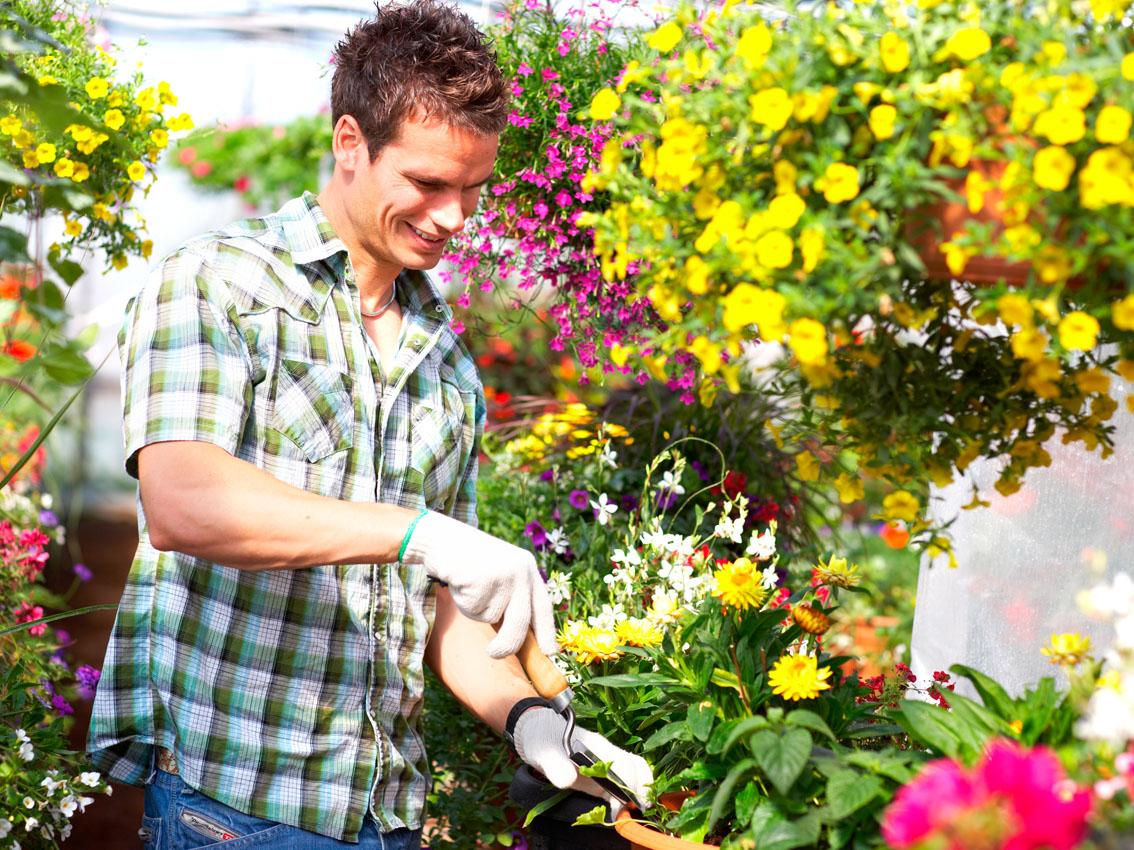 Изменила мужу с садовникои