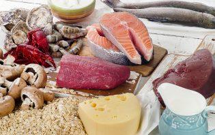 preg-food - Нужны ли беременным животные белки?